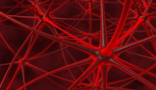 Parazit v naší mysli – toltécke učení
