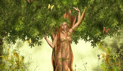Magie strom - PannaCz.com